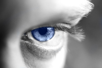 Blueeyeweb